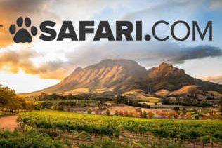 safari car hire feature